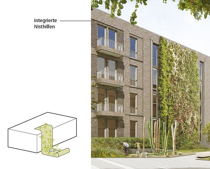 Fassadenbegrünung mitintegrierten Nisthilfen für die Stadtgärten Stellingen